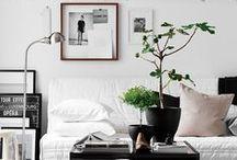 Design & Decor Ideas