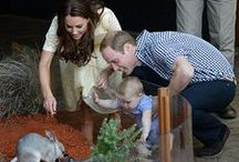 The Royal Cambridges in New Zealand / First Official Royal Visit of Baby Prince George 07 April 2014 Kate pregnancy maternity dresses