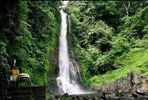 Bali / Trips To Bali