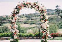 Flowers & Company / Composizioni creative con fiori e piante