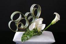 Floral art design / Composizioni floreali. Vere e proprie opere d'arte