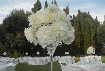 White Carnation - Flower Low Cost / Garofano bianco fiore adatto alle composizioni sferiche e di grande effetto. Con il vetro ed i cristallo si possono creare composizioni bellissime e poco costos