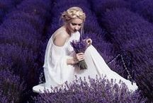 "Wedding Theme Lavander / Matrimonio a tema ""lavanda"""