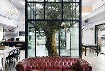 Interior design / creatvie ideas, decoration, furniture
