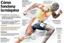 Infografias Salud y Medicina deportiva / Recopilatorio de las infografias subidas a facebook www.facebook.com/rehabmedic