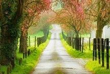 ✈ Amazing Roads ✈ /  For advance tickets booking in cheap rate, Please check out it: https://whiskr.net/