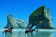 ✈ Amazing New Zealand ✈ /  For advance tickets booking in cheap rate, Please check out it: https://whiskr.net/