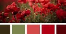 Mundo mágico das cores