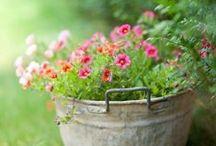 GARDEN / Inspiratie... voor in de tuin