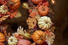 Podzim / aranžmá,příroda,barvy