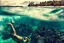 The seas history ➰