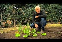 Baileys featured on Garden Gurus