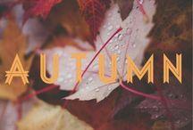 • a u t u m n / All things autumn