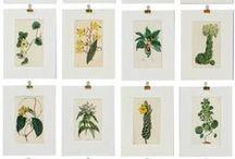 {wedding} botanical
