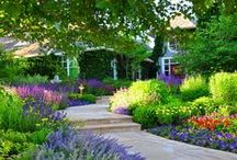 Landscaping / by Sally Caldwell