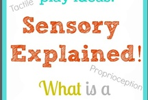 Kids' Sensational World / Sensory experiences abound.  Help each child navigate and organize his or her unique sensory world. / by Kay Lane