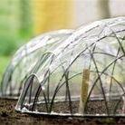 Wannabe Gardener: Tips