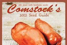 seed and plant catalogs