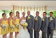 My Dream Wedding / by Ashleigh Gigliozzi