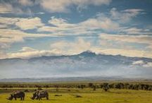 Africa. / by Mad Katigan