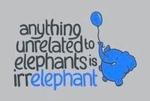 my love of Ellies... / anything elephants!