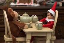 ELF ON A SHELF... OR NOT?? / A NEW THING WITH KIDS, THE ELF ON THE SHELF IS FUN AND IS USED AT XMAS,  JUST SOME IDEAS OF WHERE TO PUT UR ELF THIS YEAR! / by Sheri Asselin