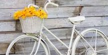 Bicicletas / Bicicletas vintage
