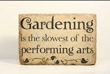 My dream garden / Kaikkea mitä minun tulee tietää puutarhanhoidosta
