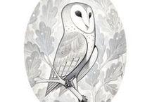 Animal Design: Birds