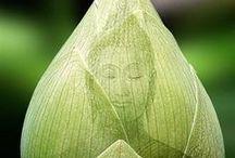 Buddha & Kwan Yin ( 2 ) / Buddha ~ Kwan Yin ~ Zen