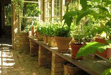 Gardening / Hagetips, hagemøbler, grønnsaker og urter til drivhuset