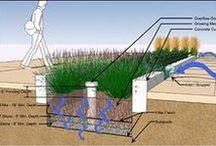 Biovaletas - jardins de chuva - rain garden