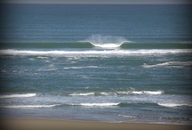 Messanges daily surf report