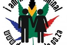 This is what we do - Cannabis Activism in South Africa / Needs no explanation