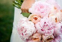 Wedding World / by Milena Mastria
