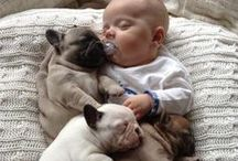 The Dogs are true friend of human!! / Thank you and I love you forever....