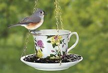 recipientes,comedero de aves
