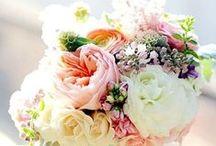 Flower Arrangements / My personal passion - I love to create beautiful arrangements of flowers.