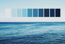 Blue  & Wood / Du bleu et du bois