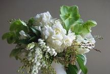 Sara Wedding White and Green