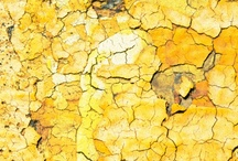 yellows/gold / by Elza Vorster