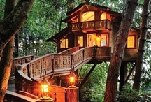 Tree House / Treehouses around the world / by TinyHouseMeetup
