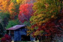 Kentucky / Beautiful places and views in the state of Kentucky.