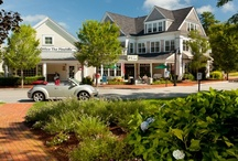 Village Green / An irresistible mix of shops and restaurants, handy businesses and fun community events, The Village Green is the very heart of The Pinehills.