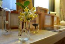 2014.2月 / 鋳物職人さんが作った花器を中心に「一輪挿し」のいろいろをご紹介しました