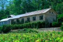 Winery escapes