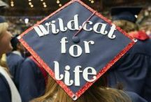 Wildcats for Life / Wildcats celebrating their graduation from the UofA!