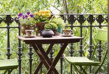 Balkon Inspiration / Hier findest du jede Menge Inspiration & Idee, wie Du Deinen Balkon mit Blumen und Gemüse zu einer grünen essbaren Oase verzaubern kannst. Natürlich habe ich auch Deko mit reingepackt :-)