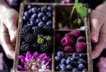 Ernteglück / Eigenes Gemüse, Kräuter und Obst zu ernten ist eines der schönste Dinge, die es gibt! Wie toll die Ernte aussehen kann seht ihr hier!