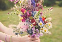 Flowers,plants,herbs*°°